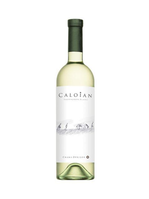 Vin Alb Sec Oprisor Caloian Sauvignon Blanc, 75 cl